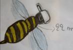Une abeille par Thalyanna